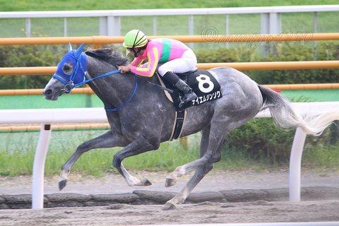 1 競馬 テイエムジンソク2