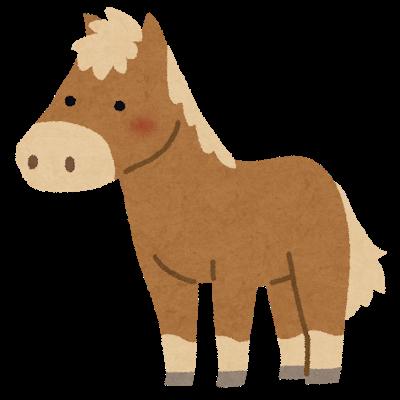 animal_pony.png