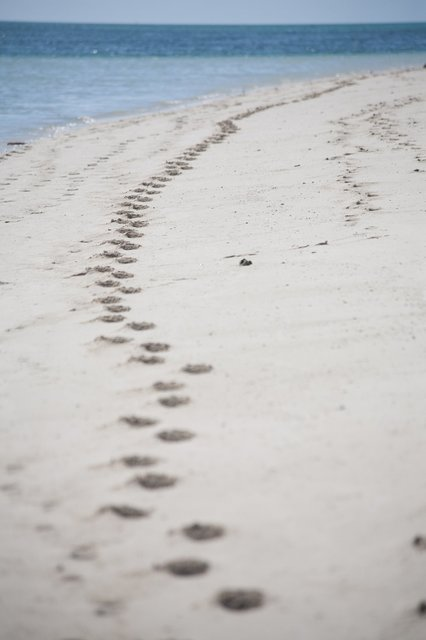 australian-beach-footprints.jpg