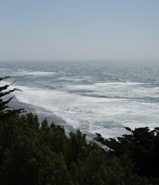 beach-waves-through-trees.jpg