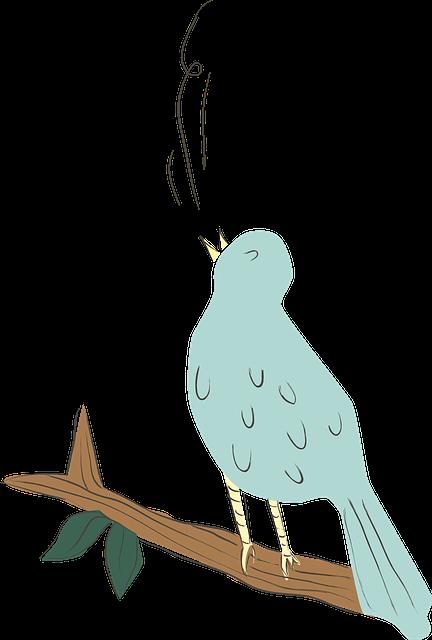 bird-616803_640.png