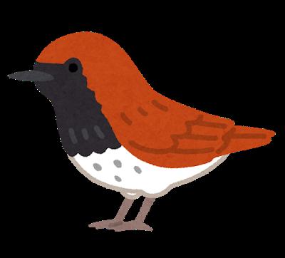 bird_akahige.png