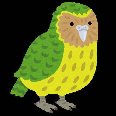bird_kakapo.png