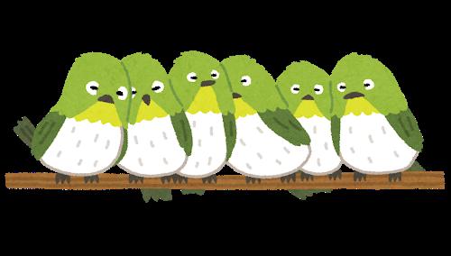 bird_mejiro_oshi.png