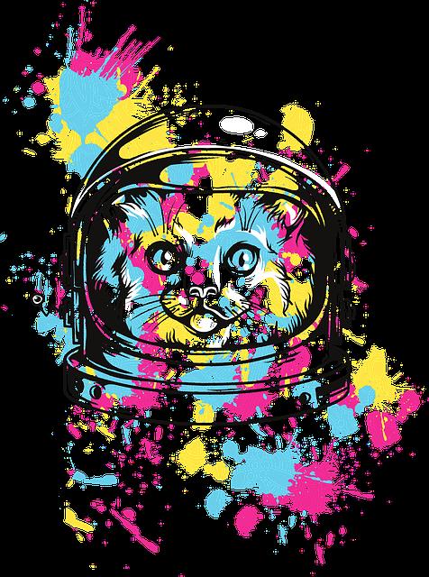 cat-5157628_640.png
