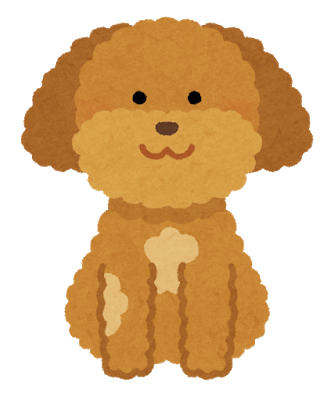 dog_toypoodle_miscolor.png