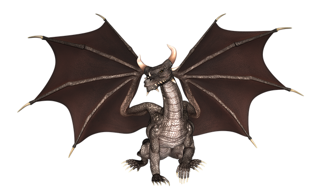 dragon-2722956_640.png