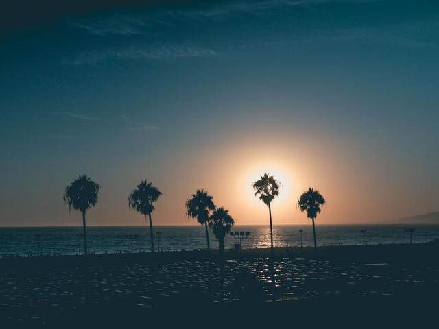 dusty-sky-with-palm-sihouettes-on-beach-at-sunset.jpg