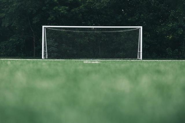 empty-soccer-net-in-front-of-forrest-low-angle.jpg