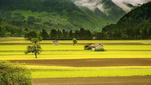 field-176602_640.jpg