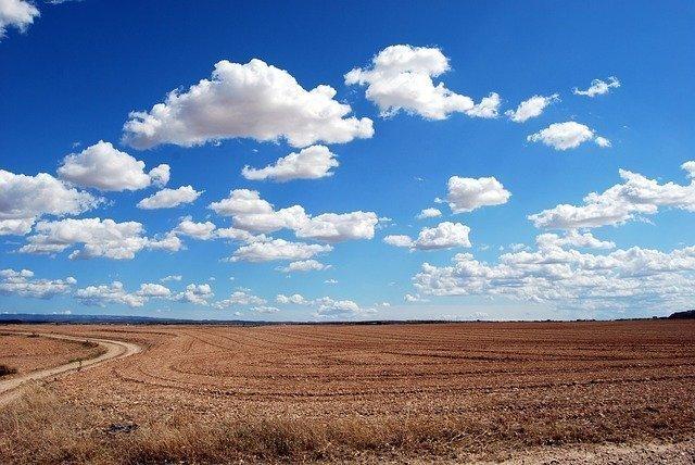 field-533541_640.jpg