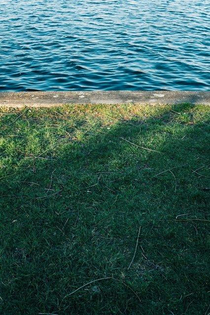 grassy-edge-by-calm-blue-water.jpg