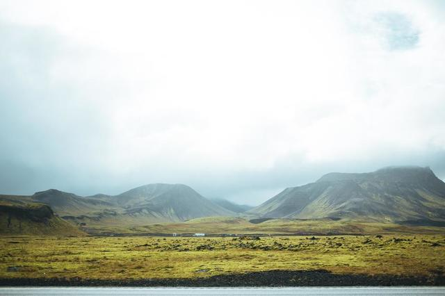 grassy-summer-iceland.jpg