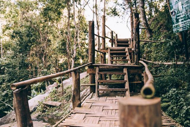 handmade-multilevel-walking-bridge-in-forest.jpg