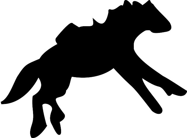 horse-42240_640.png