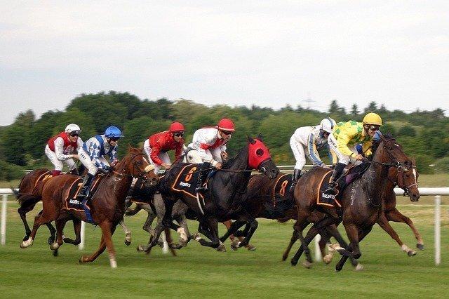 horse-racing-2714850_640.jpg
