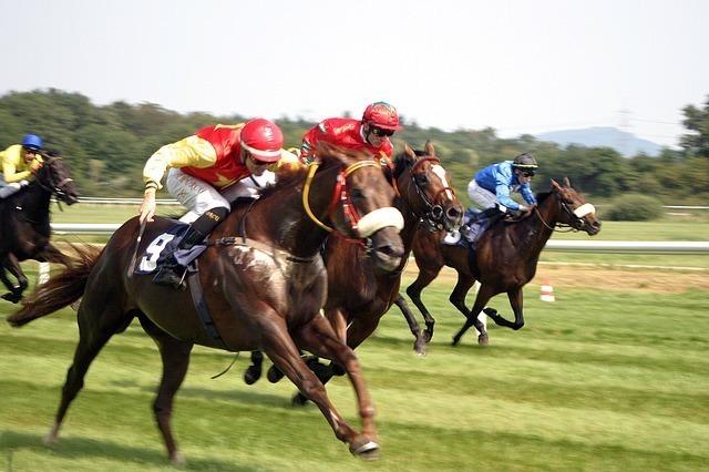 horse-racing-2714852_640.jpg