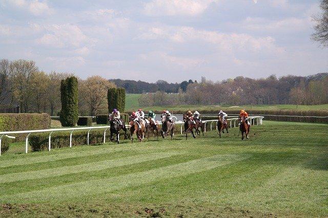 horse-racing-4581540_640.jpg