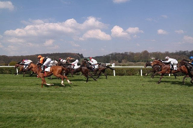 horse-racing-4581550_640.jpg