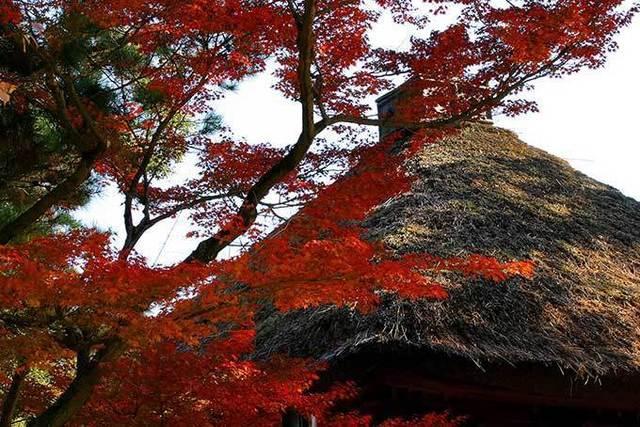 japanese-style_00034.jpg