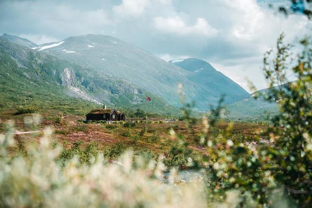 norwegian-cabin.jpg