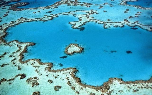 reefs-984352_640.jpg