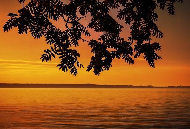 sunset-6336984_640.jpg